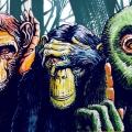 tre_scimmie_libera_low_site